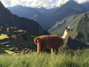 What I Learned in Peru through Education Abroad